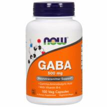 Now Foods GABA 500 mg 100 kapszula